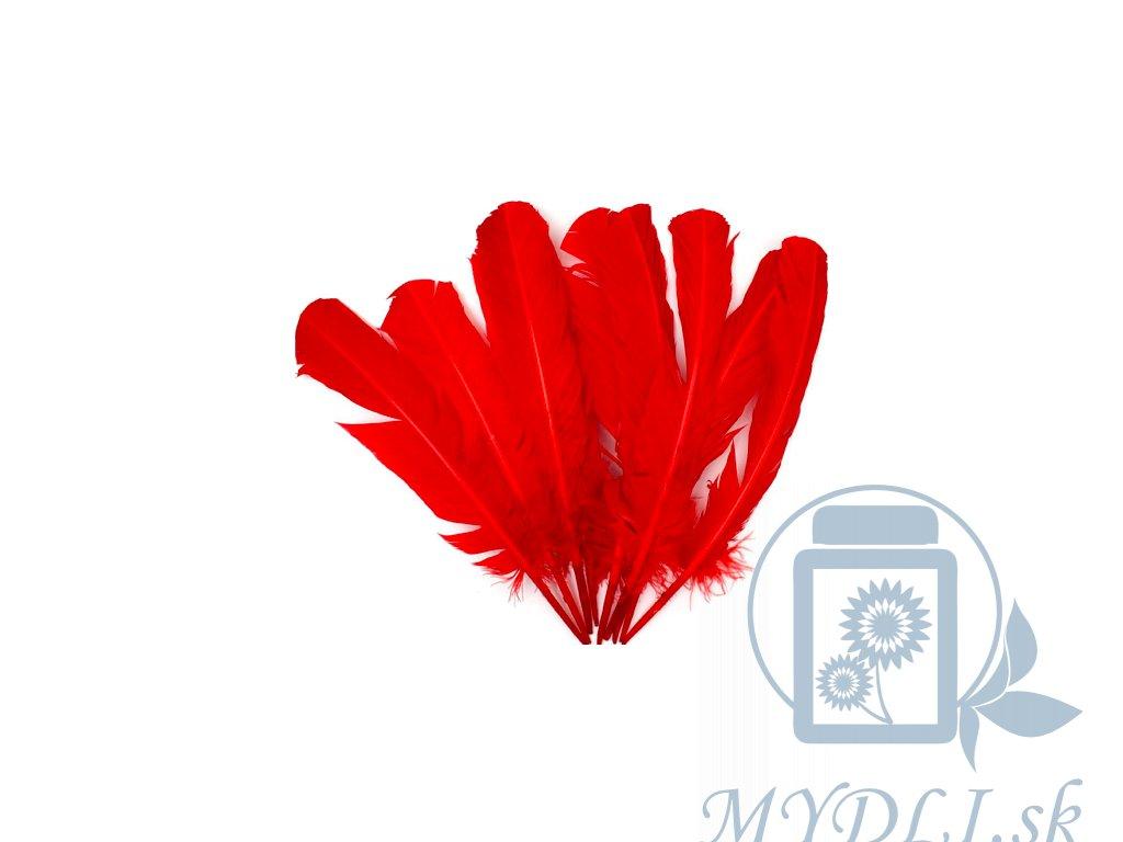 červené pierka na tvorenie
