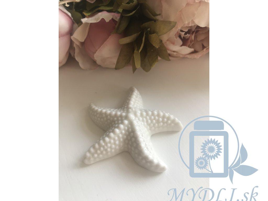 Morská hviezdička Mydli