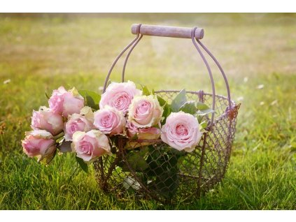 parfum do kozmetiky ruža