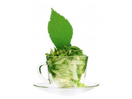 tea tree esencialny olej cajovnik