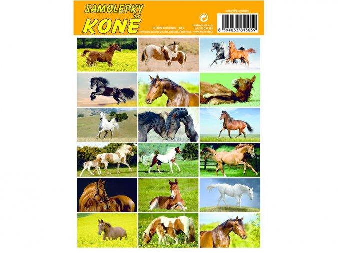Lowlands L411960 - Samolepky Koně