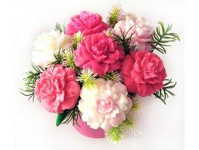 karafiáty růž5