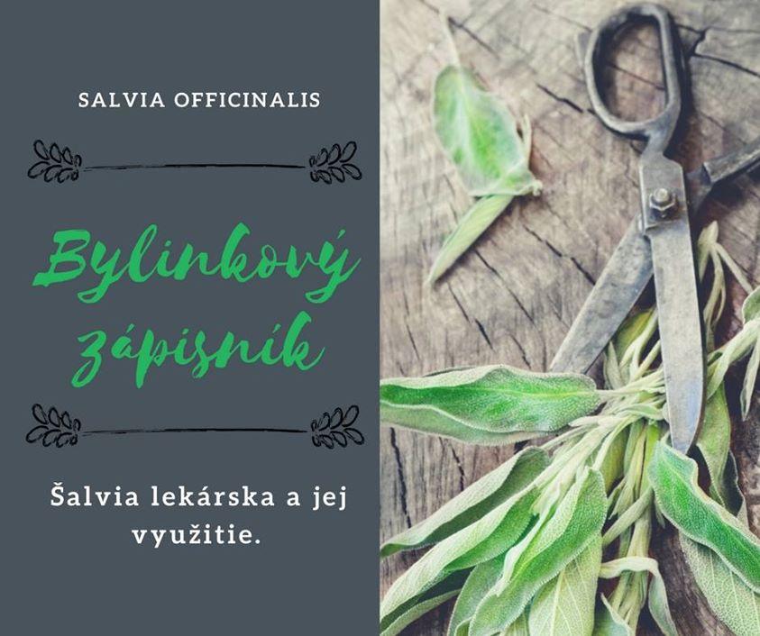 Bylinkový zápisník -ŠALVIA