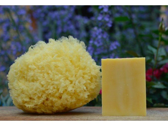 Honeycomb veľká huba