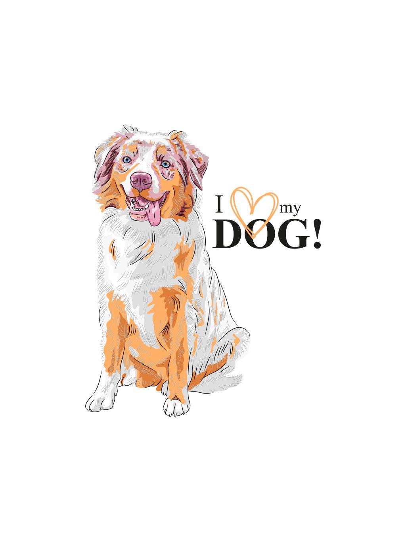 Produktové foto Australan pes