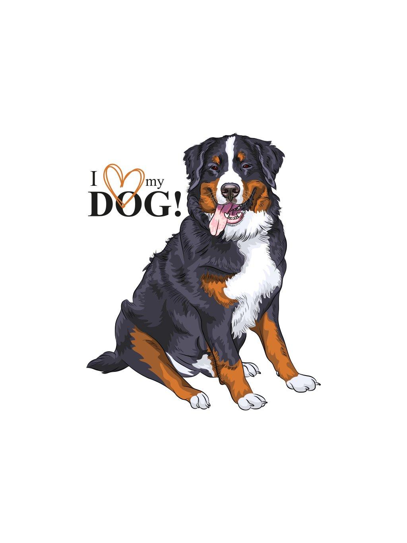 Produktové foto Bernský pes