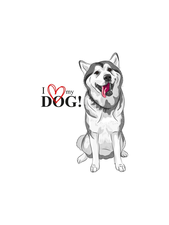 Produktové foto Husky pes