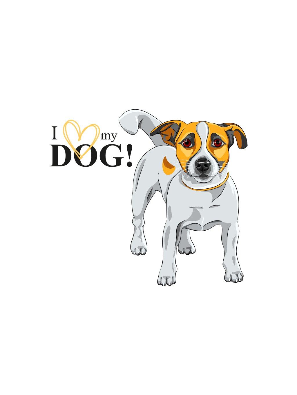 Produktové foto JackR pes