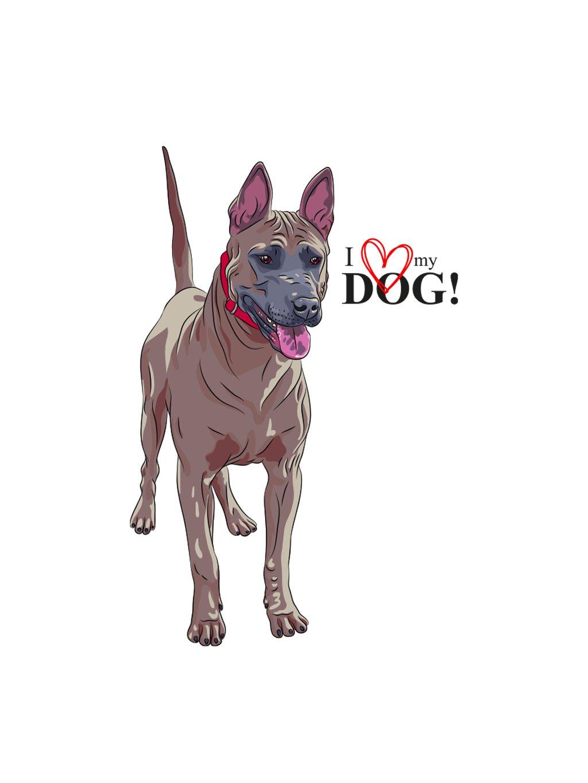 Produktové foto ThaiR pes