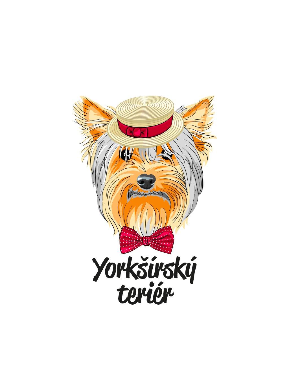 Produktové foto York hlava