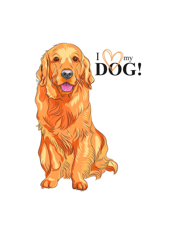 Produktové foto ZlatýR pes
