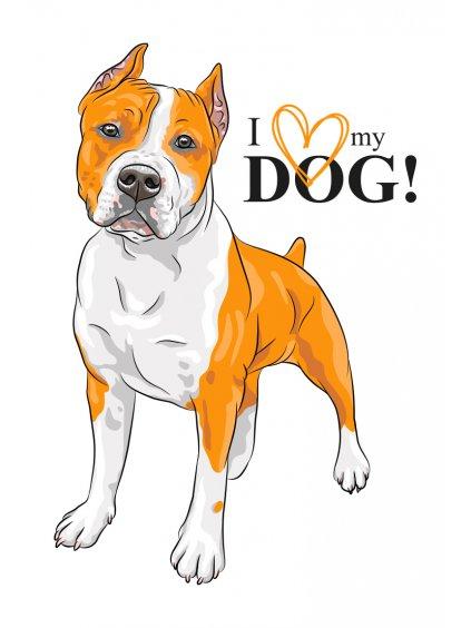 Produktové foto Amstaff pes