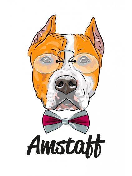 Produktové foto Amstaff hlava