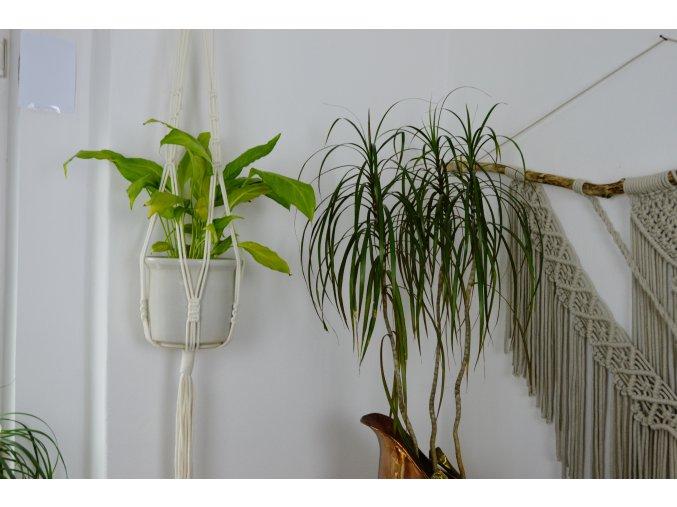 Macramé závěs na květiny  - krémový PATTY