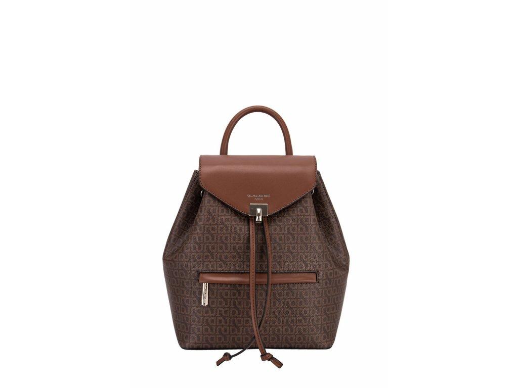 ch21009 david jones backpack (1)