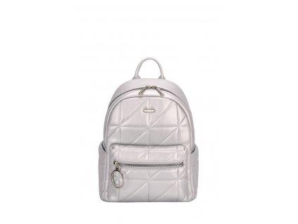 6619 1a david jones backpack