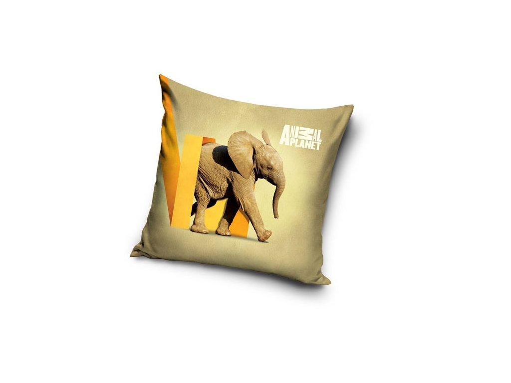 Povlak na polštářek Animal Planet Slon micro 40/40 cm