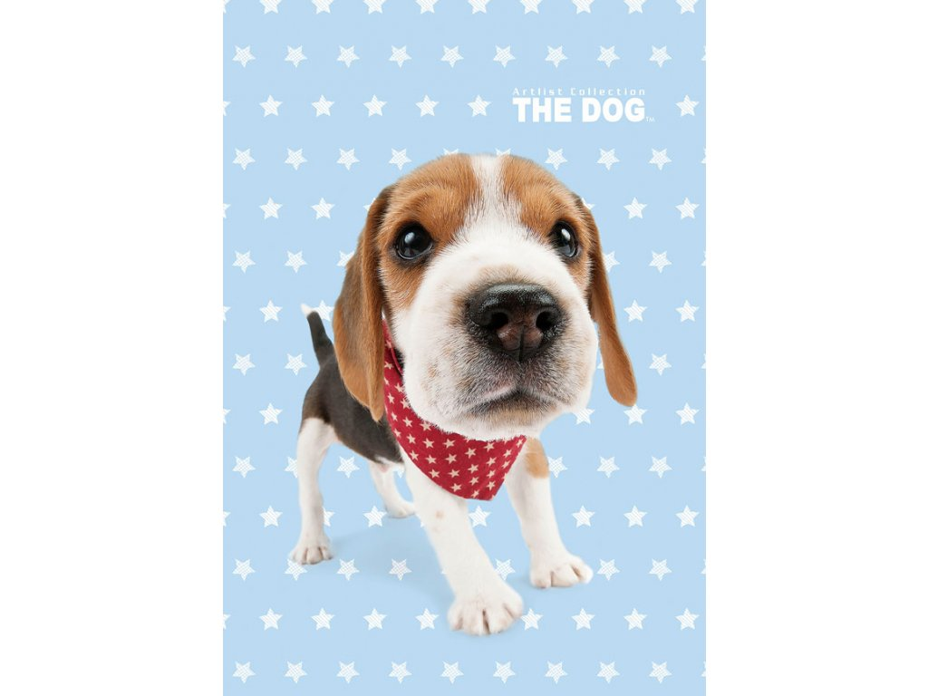 Dětský ručník The Dog 30/50