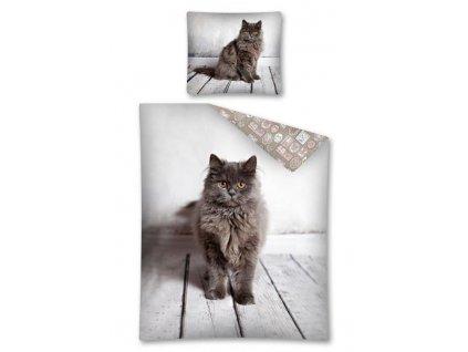 DETEXPOL Povlečení Kočka brown Bavlna, 140/200, 70/80 cm