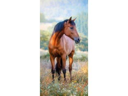 DETEXPOL Osuška Kůň na louce Bavlna - Froté, 70/140 cm
