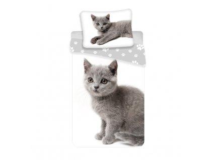 Povlečení Kočka grey 02 140/200, 70/90 - skladem