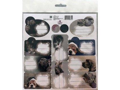 BENIAMIN Samolepící jmenovky Sweet Pets Papír, 20x20 cm - SKLADEM
