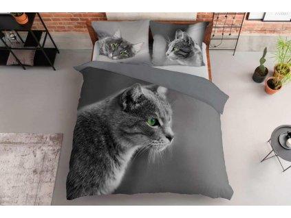 DETEXPOL Francouzské povlečení Kočka šedá Bavlna, 220/200, 2x70/80 cm