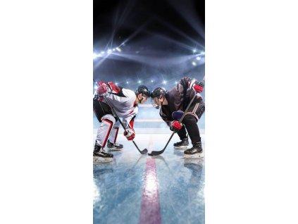 JERRY FABRICS Osuška Lední hokej Bavlna - Froté, 70/140 cm
