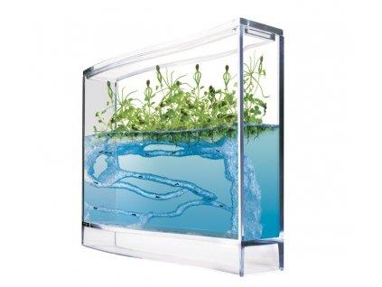 Super Forest Ant Ecoterrarium - gelové mraveniště