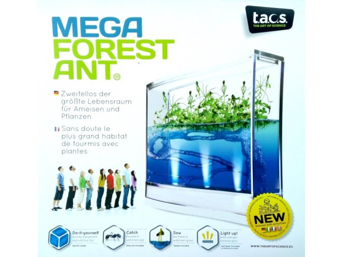 Mega Forest Ant LED 1