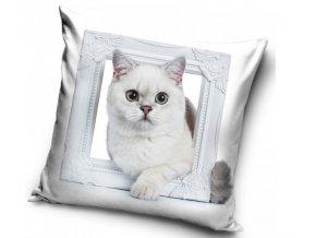 povlak na polst Kočka Sněhulka 427886