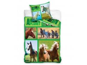 povleceni kone animal planet