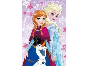 Fleece deka Ledové Království magic 100/150