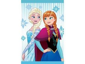 Dětský ručník Ledové Království Anna a Elsa 60/40