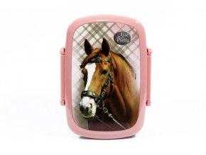 Box na svačinu Nice and Pretty Kůň