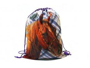 BENIAMIN Taška na tělocvik a přezůvky Nice and Pretty Kůň Polyester, 34x43 cm