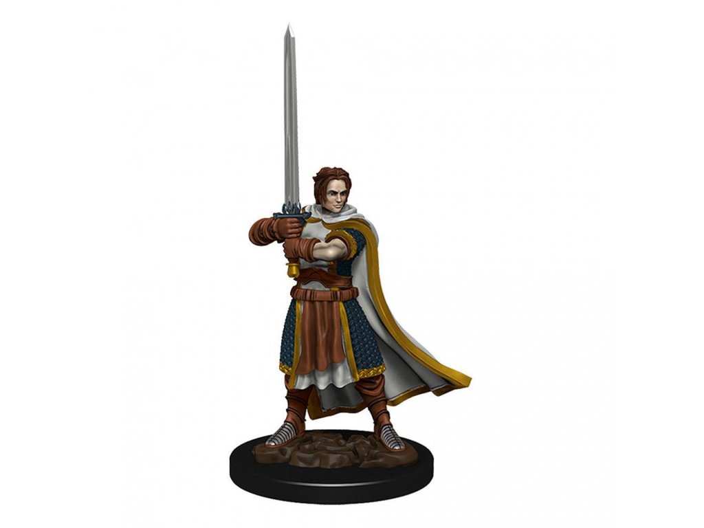 D&D Icons of the Realms Premium Miniature pre-painted Human Cleric Male Case (6)