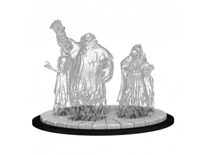 Magic The Gathering Deep Cuts Unpainted Miniatures Obzedat Ghost Council Case (6)