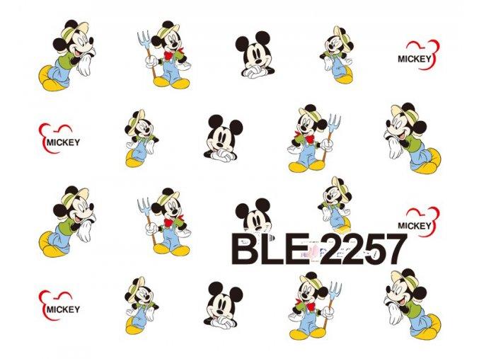 Nálepky na nechty  Mickey 8