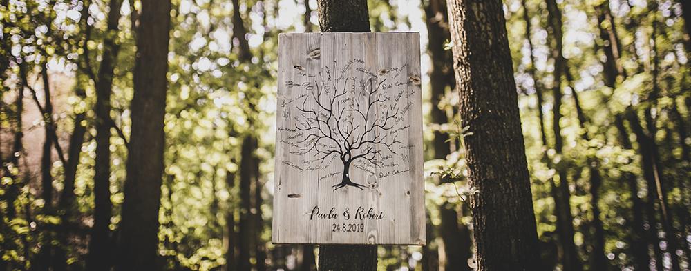 strom_sedy