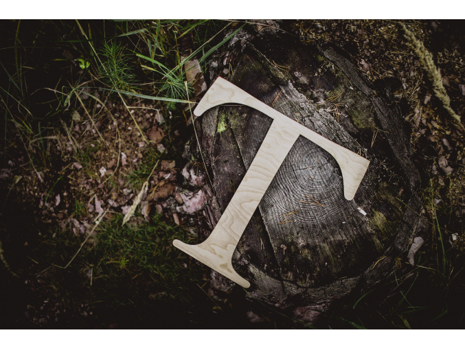 Dřevěné písmeno  Originální dekorace nejen do dětského pokojíčku.