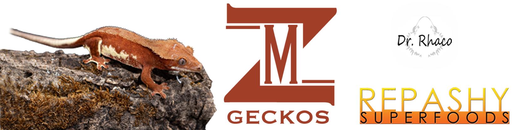 MZ Gecko