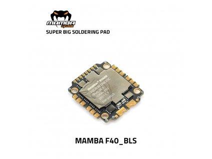 F40 BLS 1 1000x