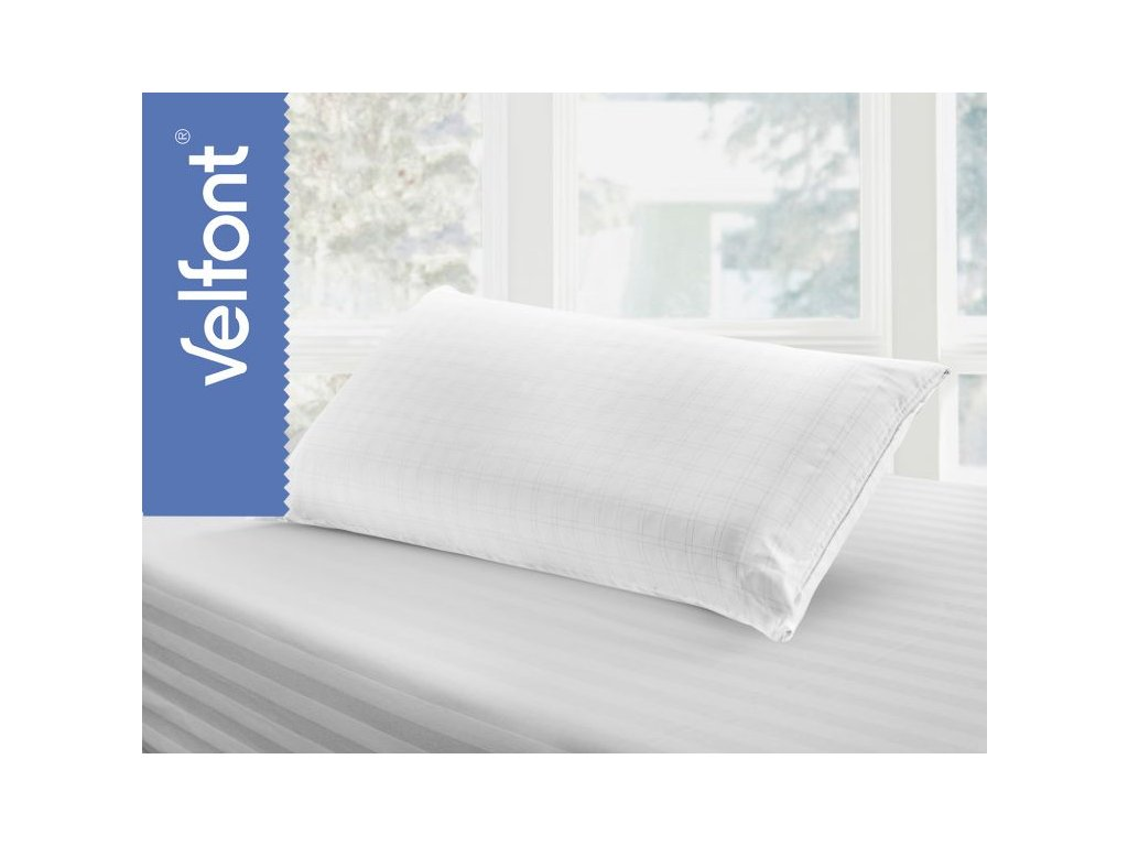 Viscosoft Pillow 2