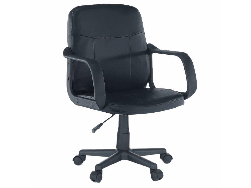 Kancelářské křeslo, černá, Ayla