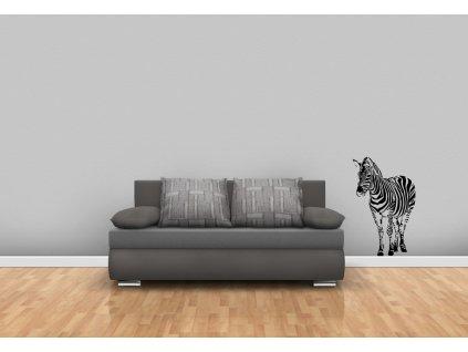 zebra stojící černá web
