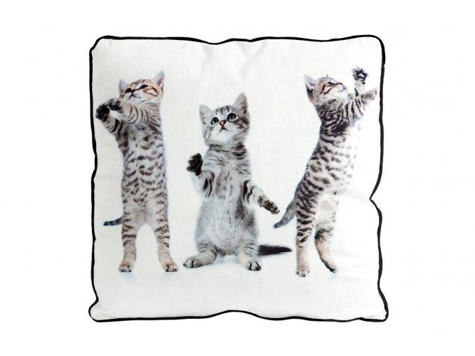 Polštář s výplní. Foto z obou stran. 3 koťata design.