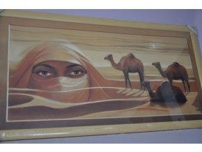 Obraz Sahara 107x57 světlý rám O11