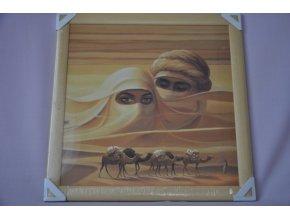 Obraz Sahara 56x56 světlý rám O5