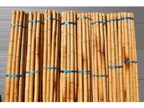 Bambusová tyč 5-6 cm, délka 2 metry